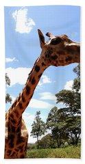 Giraffe Getting Personal 3 Hand Towel