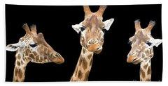 Giraffe Trio Hand Towel