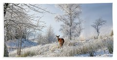 Glen Shiel Misty Winter Deer Hand Towel by Grant Glendinning