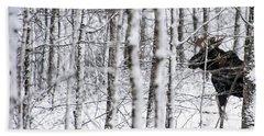 Glimpse Of Bull Moose Hand Towel