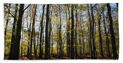 Bath Towel featuring the photograph Glorious Forest by Kennerth and Birgitta Kullman