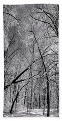 Glowing Forest, Knoch Knolls Park, Naperville Il Hand Towel
