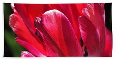 Glowing Red Tulip Hand Towel by Rona Black