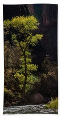 Bath Towel featuring the photograph Glowing Tree At Zion by James Woody