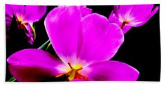 Glowing Tulips Hand Towel by Tim Townsend