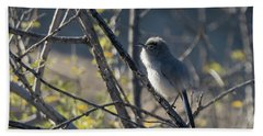 Gnatcatcher Hand Towel