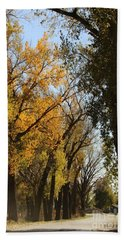 Bath Towel featuring the photograph Go For Walk by Yumi Johnson