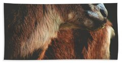 Bath Towel featuring the photograph Goat Love by Viviana  Nadowski