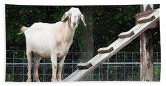 Goat Smile Hand Towel