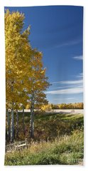Hand Towel featuring the photograph Golden Poplar by Linda Bianic