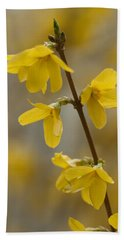 Golden Forsythia Bath Towel