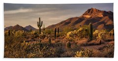 Hand Towel featuring the photograph Golden Hour On The Usery  by Saija Lehtonen