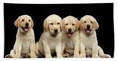 Golden Labrador Retriever Puppies Isolated On Black Background Bath Towel