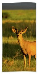 Golden Light Buck II Hand Towel