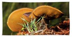 Golden Mushrooms 001 Hand Towel