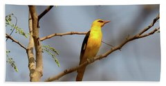 Golden Orioles Hand Towel