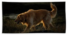 Hand Towel featuring the photograph Golden by Randy Hall