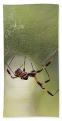 Golden-silk Spider Bath Towel