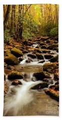 Hand Towel featuring the photograph Golden Stream In The Great Smoky Mountains by Debbie Green