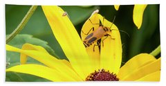 Hand Towel featuring the photograph Goldenrod Soldier Beetle by Ricky L Jones
