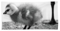 Goose Chick Hand Towel