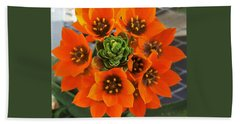 Gorgeous Orange Color Flower Hand Towel by Jasna Gopic