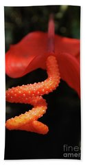 Gorgeous Orange Tropical Flower Blossom Bath Towel