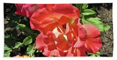 Hand Towel featuring the photograph Gorgeous Roses by Stephanie Moore