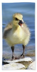 Gosling Chatter Hand Towel