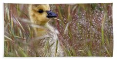 Gosling In The Meadow Bath Towel