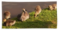 Bath Towel featuring the photograph Goslings Basking In The Sunset by Chris Flees