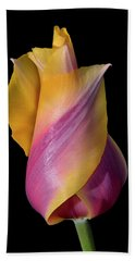 Grand Opening - Purple And Yellow Tulip 001 Hand Towel