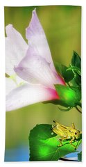 Grasshopper And Flower Hand Towel