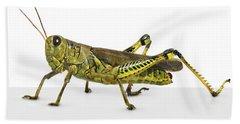 Grasshopper Bath Towel