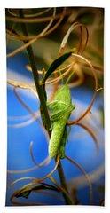 Grasshopper Hand Towels