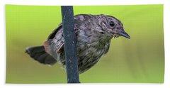 Gray Catbird After The Rain #2 Bath Towel