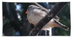 Gray Crowned Rosy Finch   Bath Towel by Haleh Mahbod