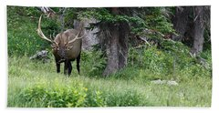 Grazing Elk Bath Towel