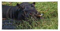 The Hippo And The Jacana Bird Hand Towel