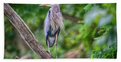 Great Blue Heron 2 Hand Towel by Gary Hall