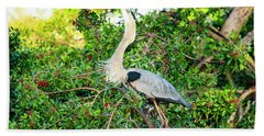 Great Blue Heron At Rookery Hand Towel