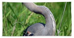 Great Blue Heron Close-up Hand Towel