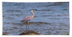 Great Blue Heron Gaze Hand Towel