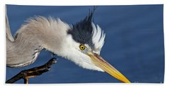 Great Blue Heron - Good Scratch Bath Towel