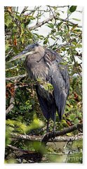 Great Blue Heron In A Tree Bath Towel