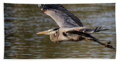 Great Blue Heron In Stratford Hand Towel