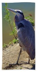 Hand Towel featuring the photograph Great Blue Heron by Mariola Bitner