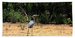 Hand Towel featuring the photograph Great Blue Heron On Beach by Sheila Brown