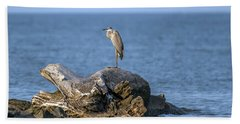 Great Blue Heron On Chesapeake Bay Hand Towel