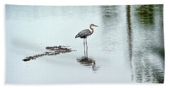 Great Blue Heron On Chesapeake Bay Pond Hand Towel